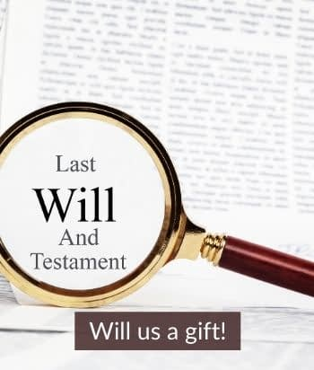 Will us a gift